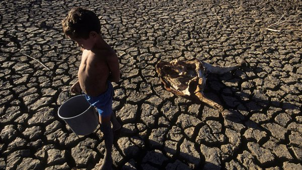 Bolsonaro nega, mas o país segue sofrendo com a fome