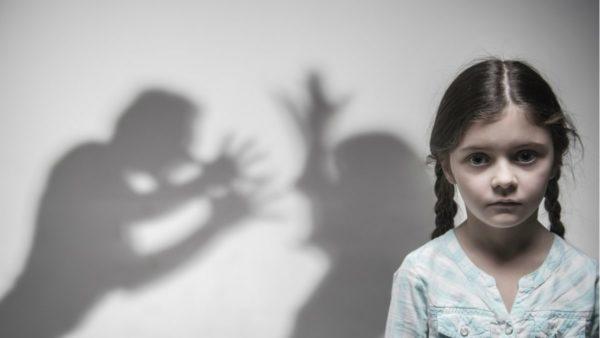 Projeto de Lei 287/2020   Garante medidas de proteção às vítimas de violência doméstica
